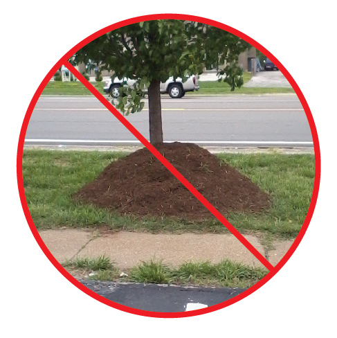 Say-No-To-Volcano-Mulching-01[1].jpg